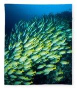 Coral Reef Scene Fleece Blanket