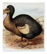 Dodo Bird Raphus Cucullatus, Extinct Fleece Blanket