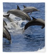 Dolphins Leaping Fleece Blanket
