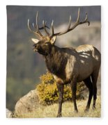 Early Morning Bull Elk Fleece Blanket