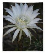 Echinopsis  Fleece Blanket