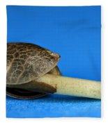 Germinating Marijuana Seed, Cannabis Fleece Blanket