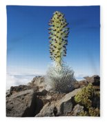 Haleakala Silversword Fleece Blanket