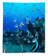 Hawaiian Reef Scene Fleece Blanket