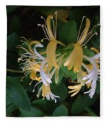 Honeysuckle Vine Fleece Blanket