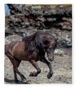 Icelandic Black Stallion, Iceland Fleece Blanket