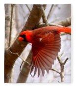 Img_0001 - Northern Cardinal Fleece Blanket
