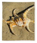 Lambis Arthritica Spider Conch Fleece Blanket