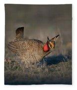 Lesser Prairie Chicken Fleece Blanket