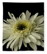 Leucanthemum Highland White Dream Fleece Blanket