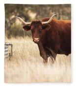 Longhorn Cow In The Paddock Fleece Blanket