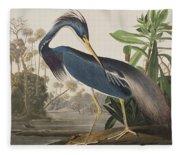 Louisiana Heron  Fleece Blanket