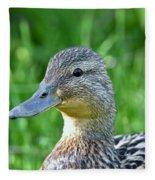 Mallard Duck Hen Fleece Blanket