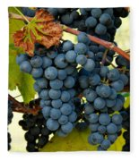 Marechal Foch Grapes Fleece Blanket