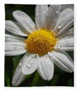 Marguerite Daisy Fleece Blanket