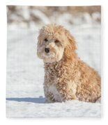 Mini Golden Doodle  Fleece Blanket