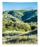 Muir Woods Forest Drive By Nature Near San Francisco Fleece Blanket