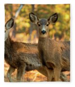 Mule Deer In The Woods Fleece Blanket