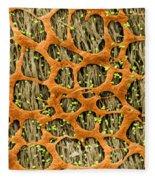Myenteric Plexus, Sem Fleece Blanket