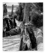 Nature Scenes Around Hunting Island South Carolina Fleece Blanket