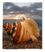 North Shore Seashell Fleece Blanket
