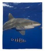 Oceanic Whitetip Shark Fleece Blanket