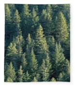 Oregon, Cascade Mountain Fleece Blanket