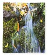 Oregon Cascades, Oregon, Usa Fleece Blanket
