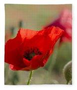 Poppies In Field In Spring Fleece Blanket