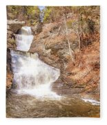 Raymondskill Falls Fleece Blanket