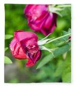 Red Rose Bud Fleece Blanket