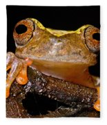 Ross Allens Treefrog Fleece Blanket