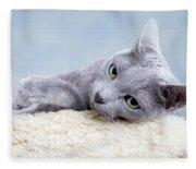 Russian Blue Cat Fleece Blanket