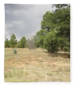 Show Low Landscape Fleece Blanket