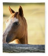 Single Horse Fleece Blanket