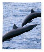 Spinner Dolphins Fleece Blanket