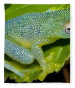 Spiny Glass Frog Fleece Blanket