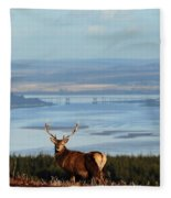 Stag Overlooking The Beauly Firth And Inverness Fleece Blanket