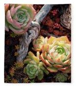 Succulents Fleece Blanket