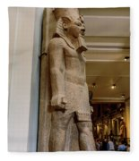 The Egyptian Museum Of Antiquities - Cairo Egypt Fleece Blanket