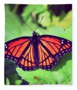 Viceroy Butterfly   Fleece Blanket