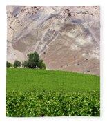 Vines Contrasting With Chiles Atacama Desert Fleece Blanket