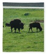 Wisconsin Buffalo Fleece Blanket