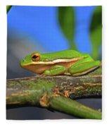 2017 11 04 Frog I Fleece Blanket