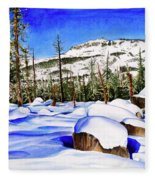 #202 Donner Summit Fleece Blanket