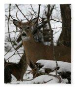 Whitetail Buck Fleece Blanket
