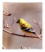 2164 - Goldfinch Fleece Blanket