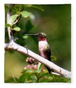 2274 - Hummingbird Fleece Blanket