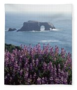 2a6101 Arched Rock And Blue Pod Lupine Ca Fleece Blanket
