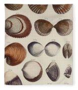 Aquatic Animals - Seafood - Shells - Mussels Fleece Blanket